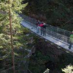 Progettone: Una risorsa per il Trentino